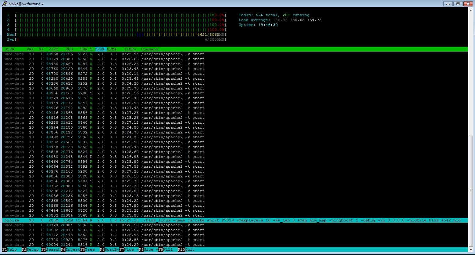Как сделать IP адрес динамическим - VPN 100
